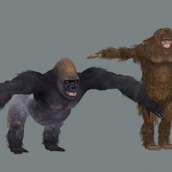超精美写实动物 模型+贴图全套共70个动物园高品质动物