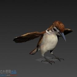 写实飞禽鸟一只
