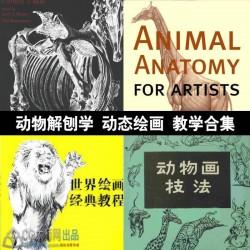 动物解刨学 动态绘画动物画技法权威教材动物绘画教学
