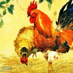 【传统绘画国画】山水花鸟写意画-工笔画(403图)