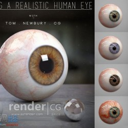 真实人物眼球三维模型+贴图
