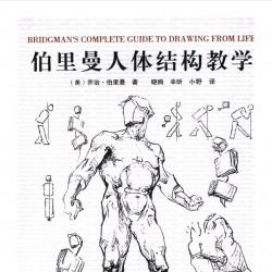 伯里曼人体结构教学pdf