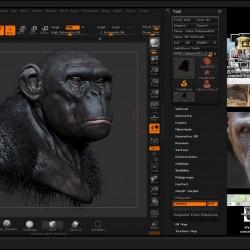 【猩猩雕刻到后期-解剖讲解全过程演示】