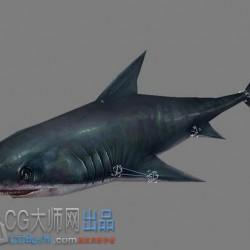 海洋生物各种鱼动作资源合集