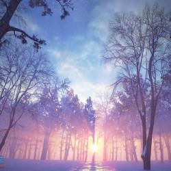 冬日里的覆雪森林雪景场景 高模