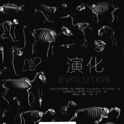 【稀有】演化 动物骨骼结构摄影精选 美术设计结构研究参考资源
