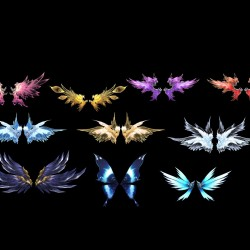 一套超好看的翅膀,看了都想买