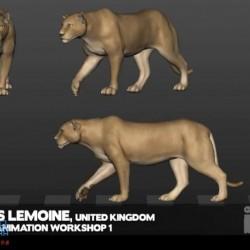 [视频] 狮子各视图走路动画欣赏