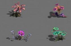[3D资源] 奇花异草