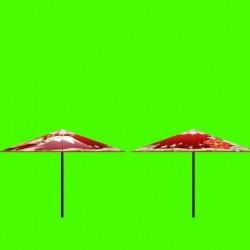 莺燕鸣樱二次元模型