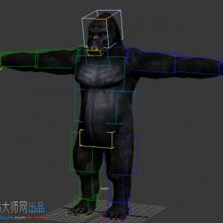 大猩猩一只,带biped绑定蒙皮,2013版