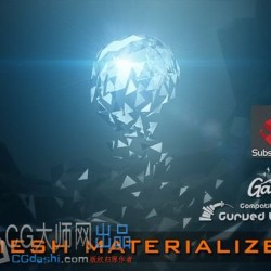 Mesh Materializer 2019.4