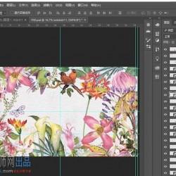 手绘风植物花卉 PNG图集+6个PSD源文件分享101p