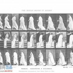 The Human Figure In Motion 运动规律照片参考资料素材