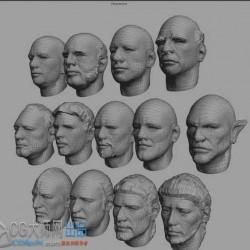 13个Silo人头模型