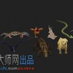 11个动物模型资源