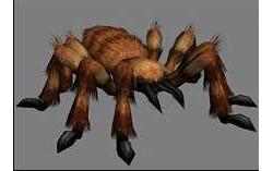 带动作生物模型 ~ 猎蜘蛛 (FBX)