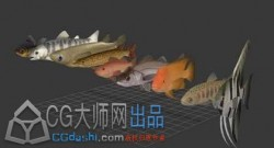 几条鱼儿动作模型资源