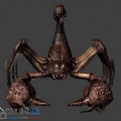 写实蝎子,爬虫