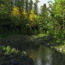 森林曲折河流户外环境场景3D模型合集
