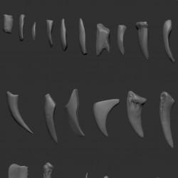 ZBrush怪物动物牙齿笔刷