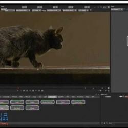 Boris FX Silhouette视觉特效核心技能训练视频教程