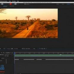 AE影像中内容替换删除添加技术训练视频教程