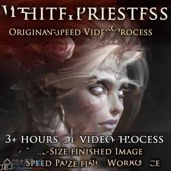精灵女祭司概念艺术数字绘画实例训练视频教程
