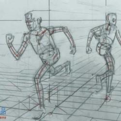人体透视结构高清详细基础讲解传统手绘视频教程